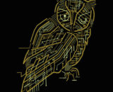 Electrical Owl