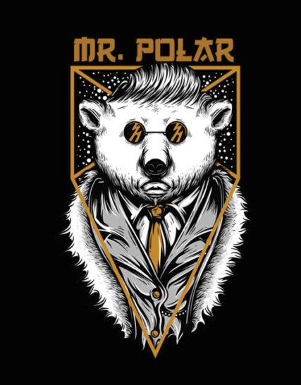 MR POLAR