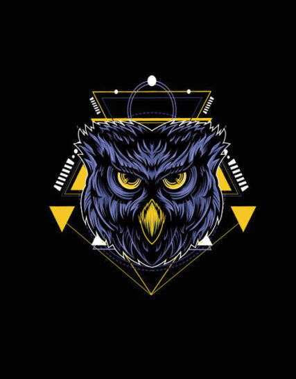 Geometric Owl-3